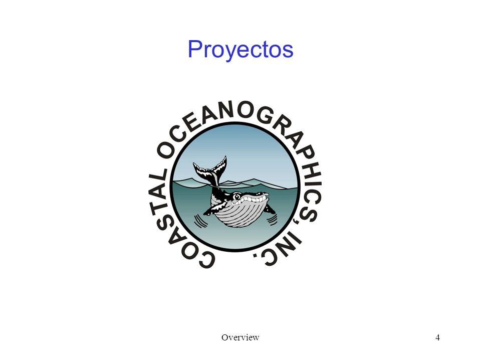 Overview4 Proyectos