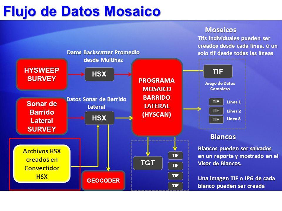 Flujo de Datos Mosaico HYSWEEP SURVEY Sonar de Barrido Lateral SURVEY PROGRAMA MOSAICO BARRIDO LATERAL (HYSCAN) HSX Datos Sonar de Barrido Lateral TIF