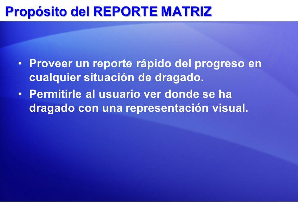 Propósito del REPORTE MATRIZ Proveer un reporte rápido del progreso en cualquier situación de dragado. Permitirle al usuario ver donde se ha dragado c