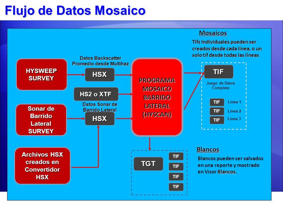Procesos Mosaico Sonar lateral Etapa 1 Ver Bruto Etapa 1 Ver Bruto Cargue datos sonar lateral brutos – archivos HSX, HS2, XTF o LOG Cargue datos sonar lateral brutos – archivos HSX, HS2, XTF o LOG Ajuste Traqueo del Fondo, suavice rumbo y datos de traqueo.