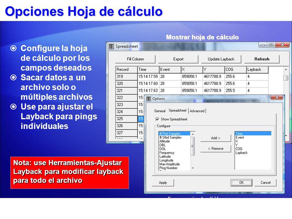 Opciones Hoja de cálculo Configure la hoja de cálculo por los campos deseados Sacar datos a un archivo solo o múltiples archivos Use para ajustar el L
