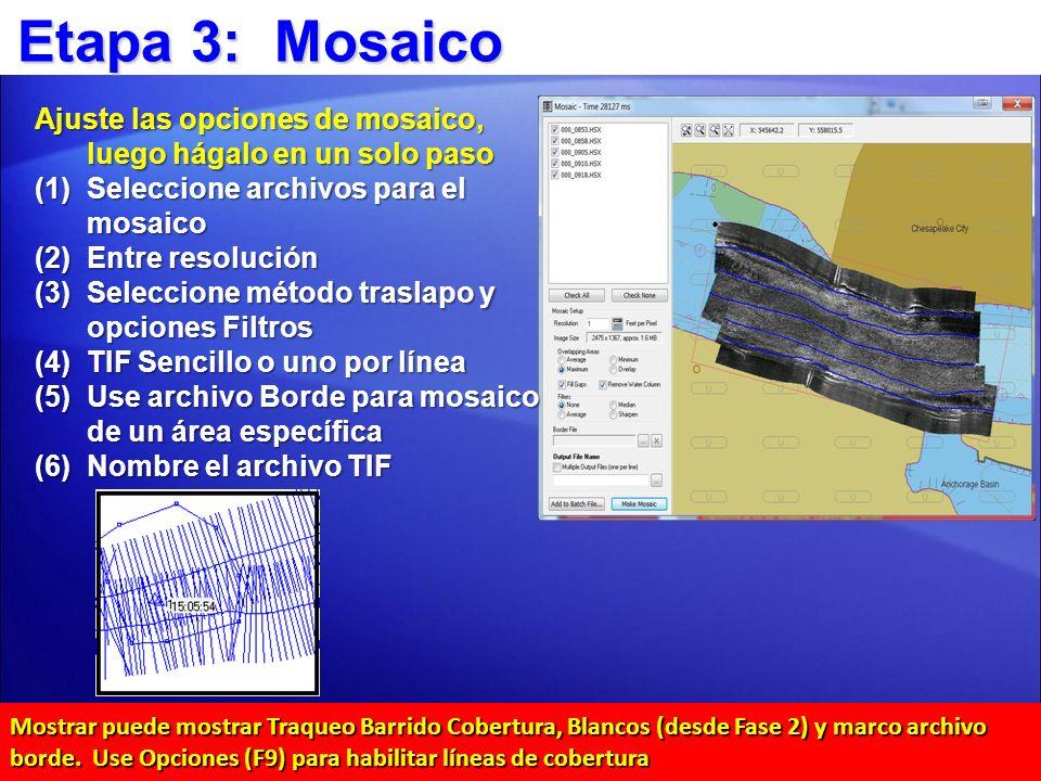 Etapa 3: Mosaico Ajuste las opciones de mosaico, luego hágalo en un solo paso (1)Seleccione archivos para el mosaico (2)Entre resolución (3)Seleccione