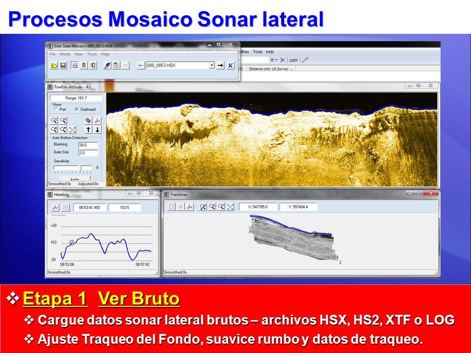 Procesos Mosaico Sonar lateral Etapa 1 Ver Bruto Etapa 1 Ver Bruto Cargue datos sonar lateral brutos – archivos HSX, HS2, XTF o LOG Cargue datos sonar