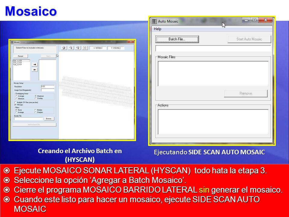 Mosaico Ejecute MOSAICO SONAR LATERAL (HYSCAN) todo hata la etapa 3. Ejecute MOSAICO SONAR LATERAL (HYSCAN) todo hata la etapa 3. Seleccione la opción