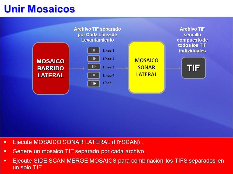 Unir Mosaicos Ejecute MOSAICO SONAR LATERAL (HYSCAN). Ejecute MOSAICO SONAR LATERAL (HYSCAN). Genere un mosaico TIF separado por cada archivo. Genere