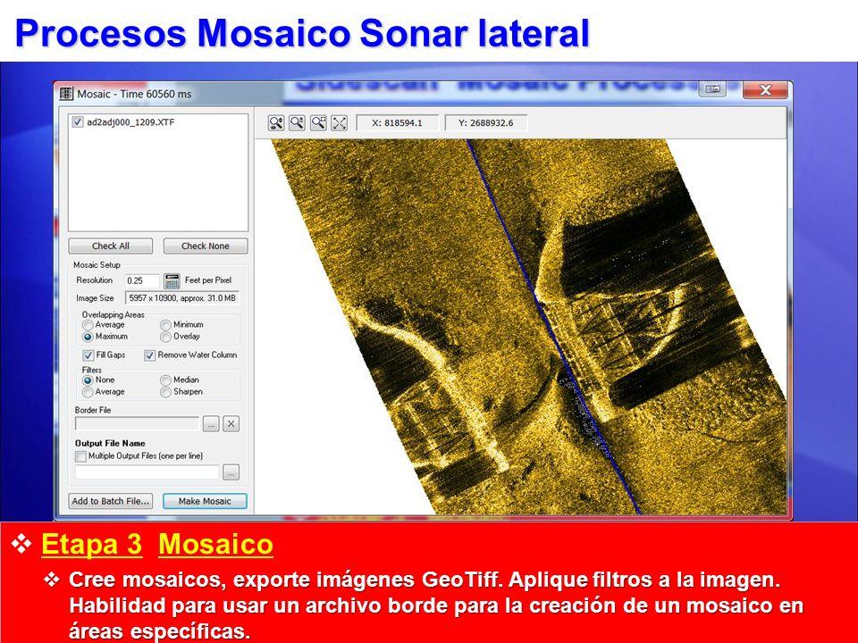 Procesos Mosaico Sonar lateral Etapa 3 Mosaico Cree mosaicos, exporte imágenes GeoTiff. Aplique filtros a la imagen. Habilidad para usar un archivo bo
