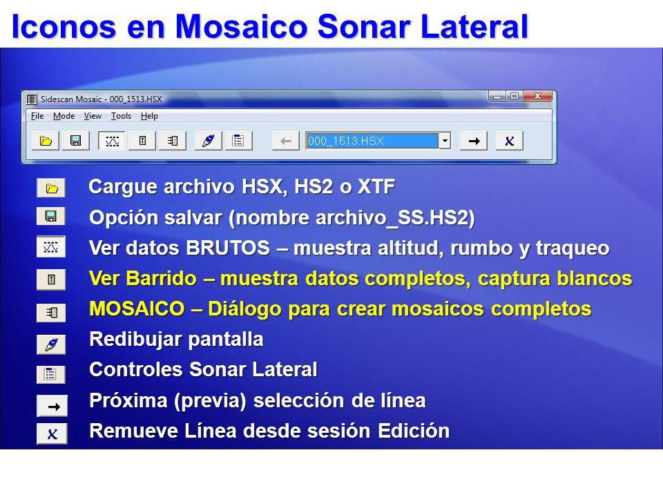 Iconos en Mosaico Sonar Lateral Cargue archivo HSX, HS2 o XTF Cargue archivo HSX, HS2 o XTF Opción salvar (nombre archivo_SS.HS2) Opción salvar (nombr
