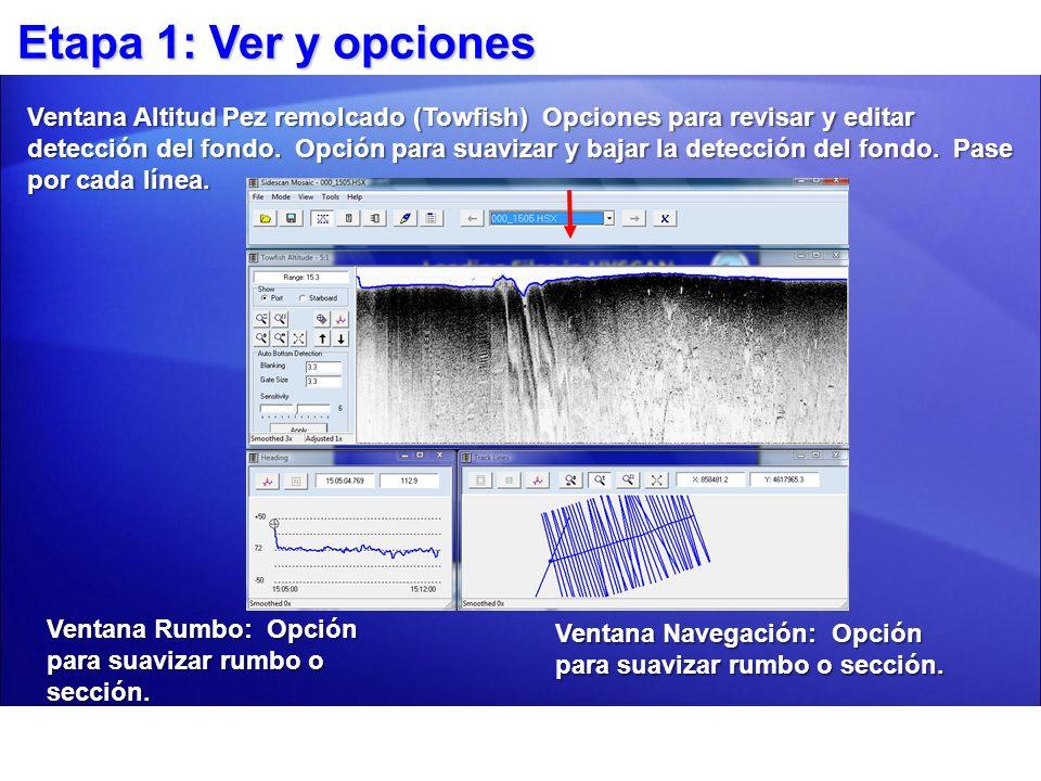 Etapa 1: Ver y opciones Ventana Rumbo: Opción para suavizar rumbo o sección. Ventana Navegación: Opción para suavizar rumbo o sección. Ventana Altitud