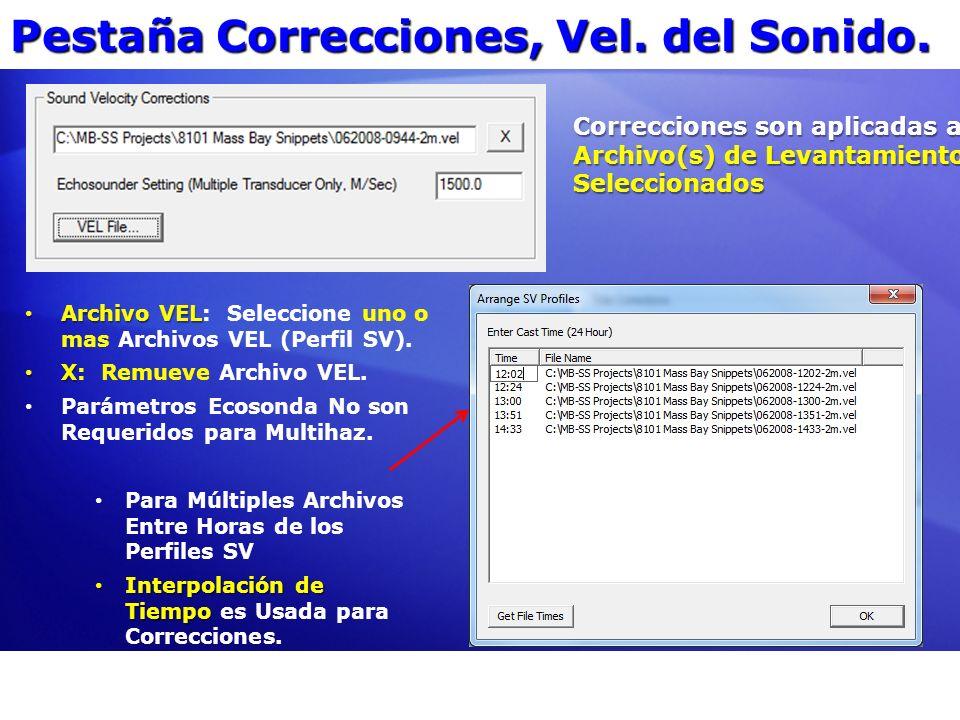 Pestaña Correcciones, Vel. del Sonido. Archivo VEL Archivo VEL: Seleccione uno o mas Archivos VEL (Perfil SV). X X: Remueve Archivo VEL. Parámetros Ec