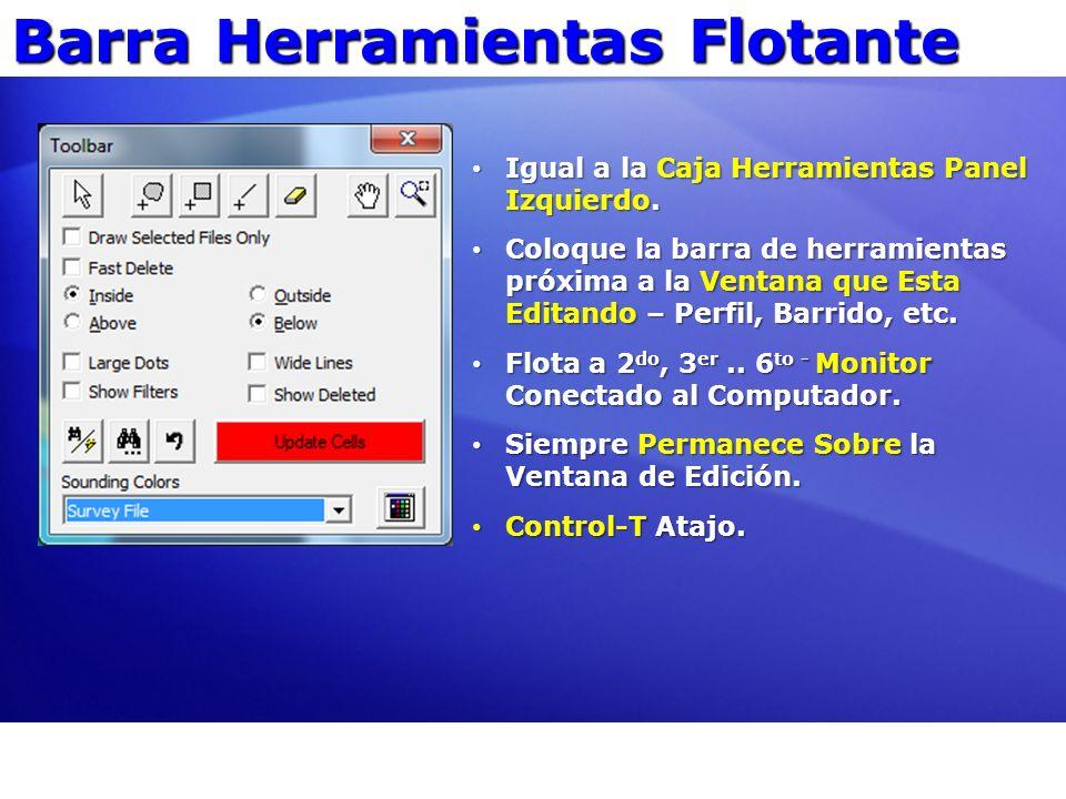 Barra Herramientas Flotante Igual a la Caja Herramientas Panel Izquierdo. Igual a la Caja Herramientas Panel Izquierdo. Coloque la barra de herramient