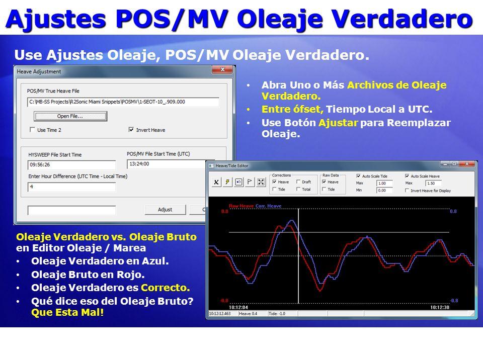 Ajustes POS/MV Oleaje Verdadero Abra Uno o Más Archivos de Oleaje Verdadero. Entre ófset, Tiempo Local a UTC. Use Botón Ajustar para Reemplazar Oleaje