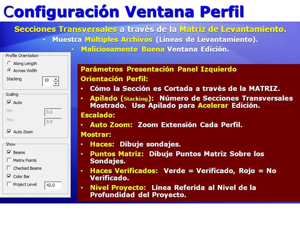 Configuración Ventana Perfil Parámetros Presentación Panel Izquierdo Orientación Perfil: Cómo la Sección es Cortada a través de la MATRIZ. Cómo la Sec