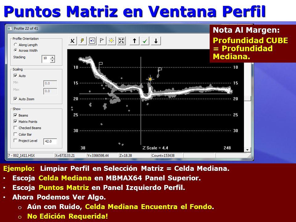 Puntos Matriz en Ventana Perfil Ejemplo: Limpiar Perfil en Selección Matriz = Celda Mediana. Escoja Celda Mediana en MBMAX64 Panel Superior. Escoja Ce