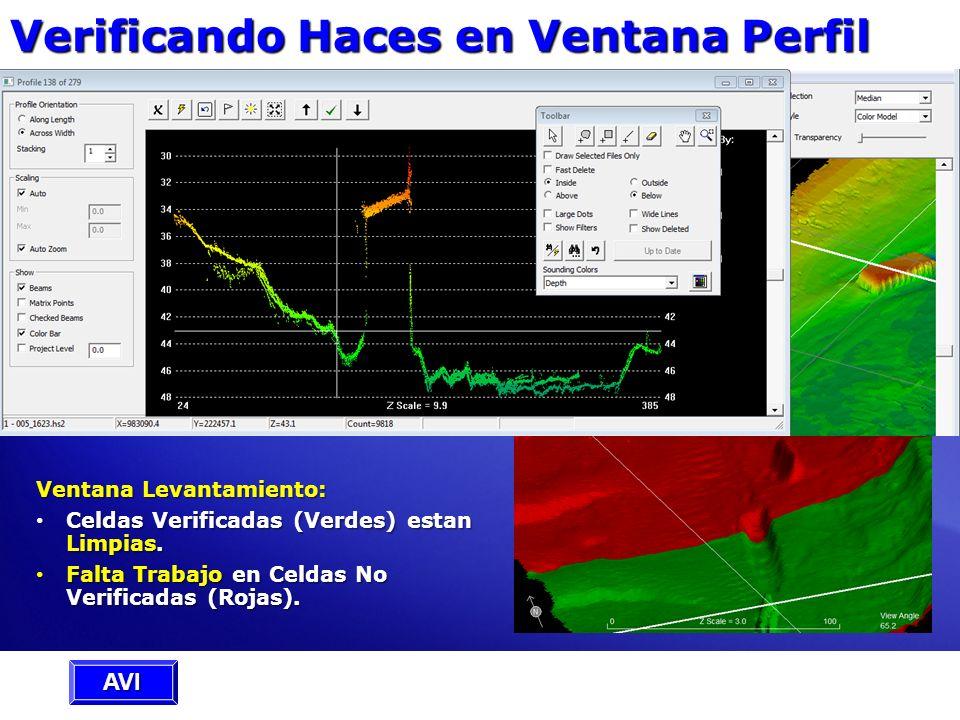 Verificando Haces en Ventana Perfil Ventana Perfil: Mostrar Haces Verificados en Parámetros Presentación. Mostrar Haces Verificados en Parámetros Pres