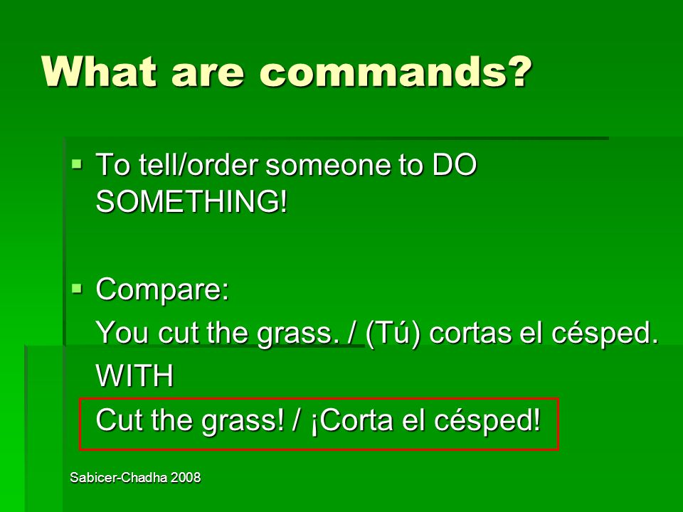 Sabicer-Chadha 2008 What are commands.To tell/order someone to DO SOMETHING.