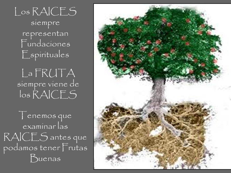 Los RAICES siempre representan Fundaciones Espirituales La FRUTA siempre viene de los RAICES Tenemos que examinar las RAICES antes que podamos tener F