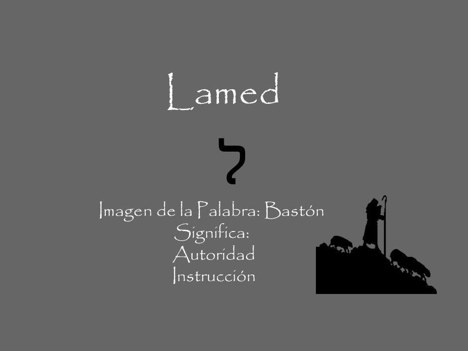 Lamed ל Imagen de la Palabra: Bastón Significa: Autoridad Instrucción