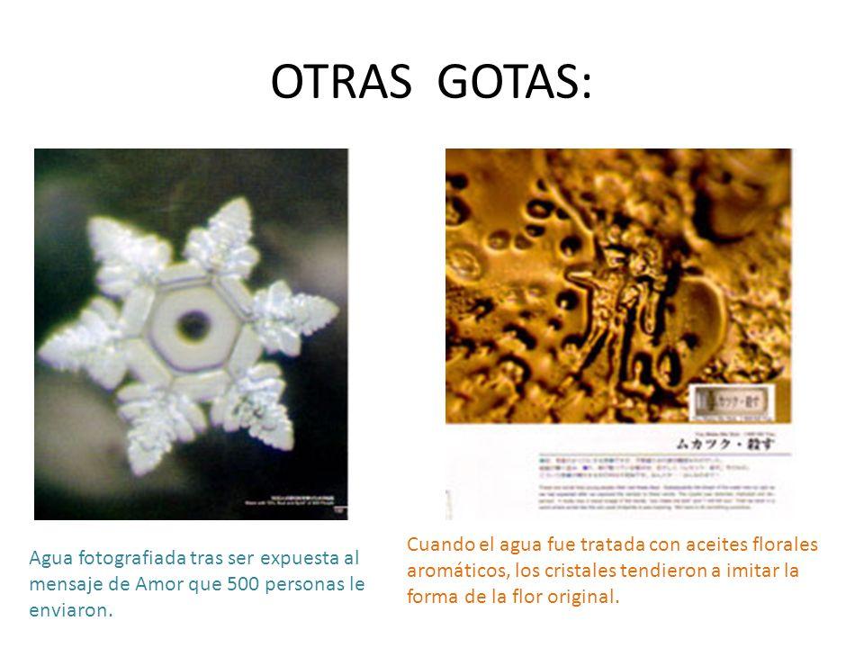 OTRAS GOTAS: Agua fotografiada tras ser expuesta al mensaje de Amor que 500 personas le enviaron. Cuando el agua fue tratada con aceites florales arom