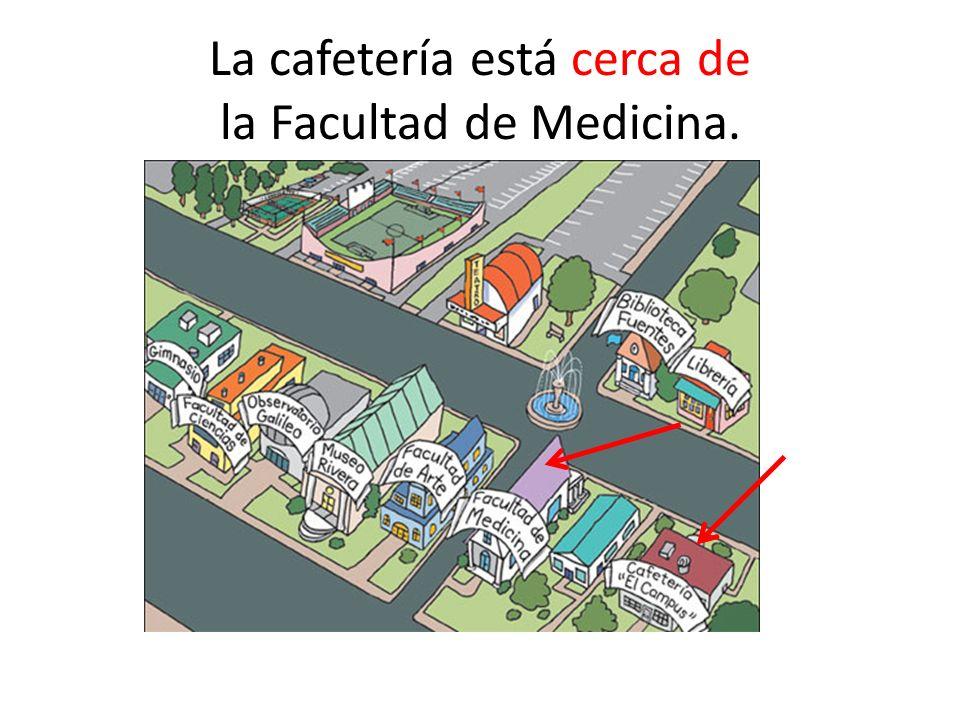 La cafetería está cerca de la Facultad de Medicina.