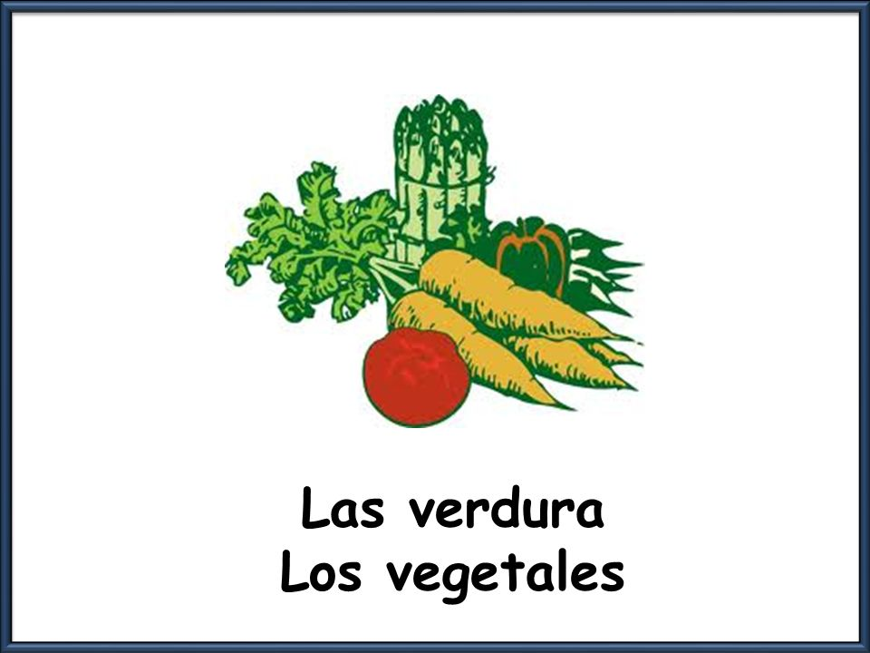 Las verdura Los vegetales