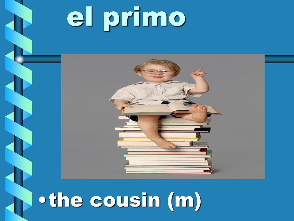 los primos the cousinsthe cousins