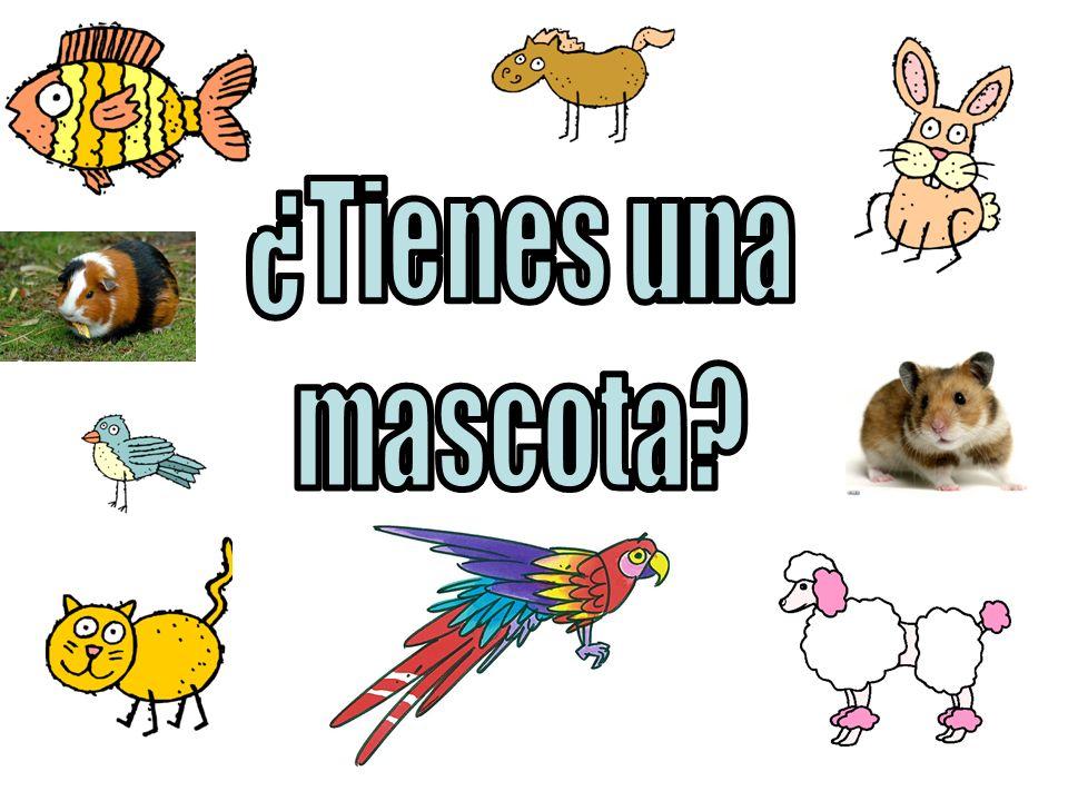 burro (donkey): iii-aah heehaw caballo (horse): jiiiiiii neigh, n-a-a-a-y cerdo (pig): oinc-oinc oink gallina (hen): coc co co coc, kara-kara-kara kara cluck gallo (rooster): kikirikí cock-a-doodle-doo gato (cat): miau meow pato (duck): cuac cuac quack pájaro (bird) pío pío perro (dog): guau guau bow-wow vaca (cow): mu moo