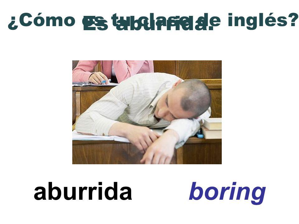 aburrida boring ¿Cómo es tu clase de inglés? Es aburrida.