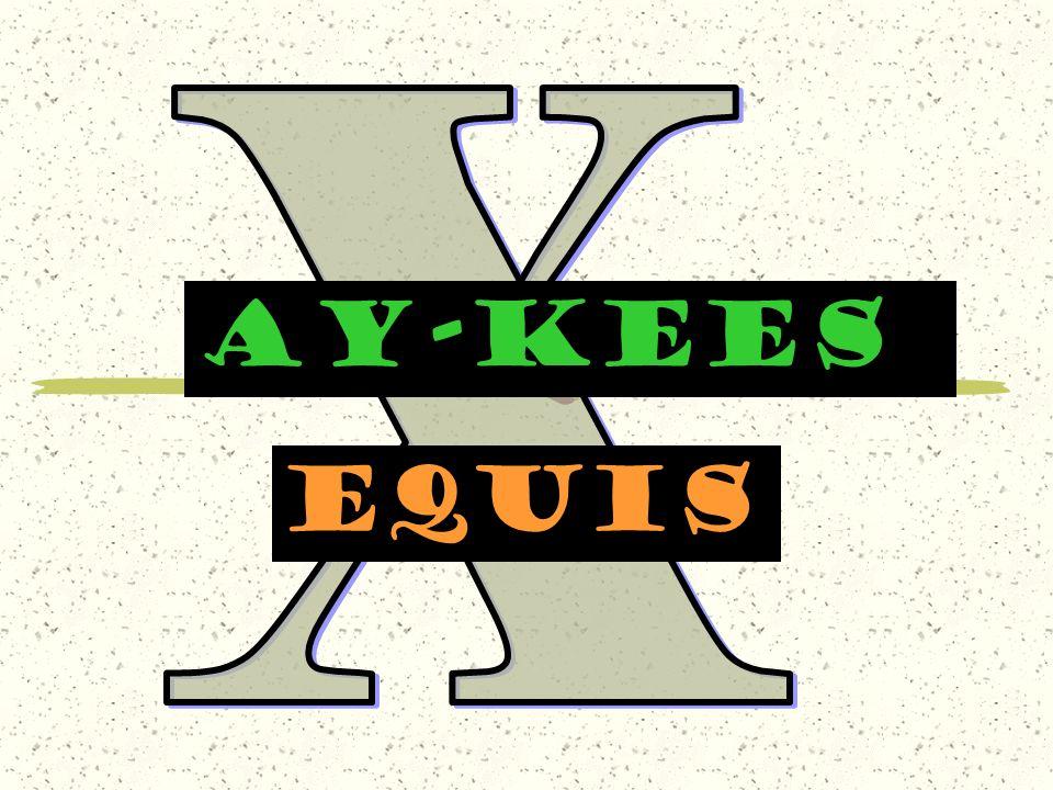 AY-KEES equis