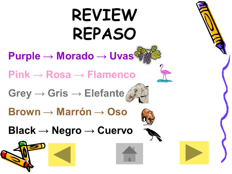 REVIEW REPASO Red Rojo Manzana Blue Azul El Cielo Yellow Amarillo Platanos Green Verde Dinero Orange Naranja Calabaza