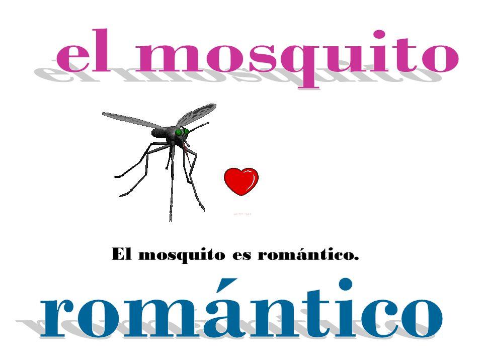 El mosquito es romántico.