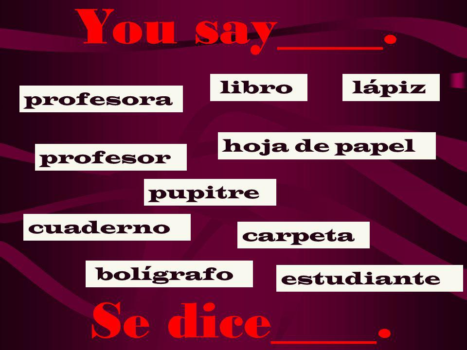 How do you say ___ in Spanish? ¿Cómo se dice __ en español?