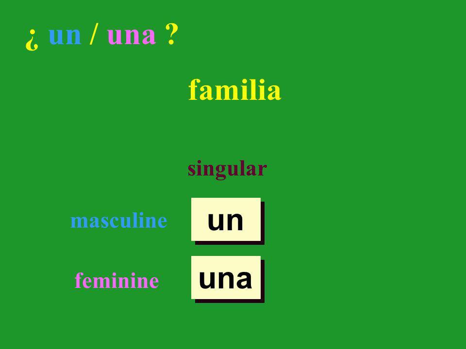 un una ¿ un / una casa singular masculine feminine