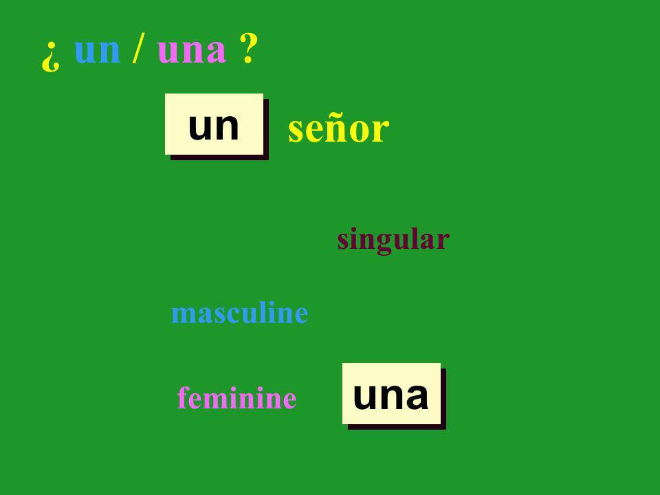 ¿ un / una ? señor singular masculine feminine un una