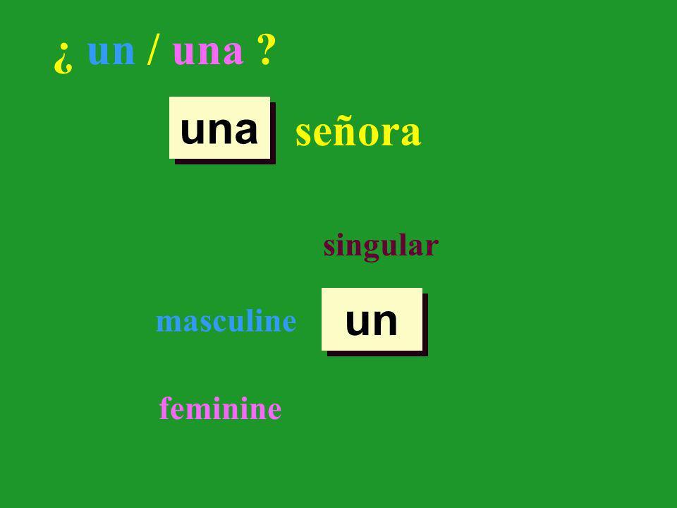 ¿ un / una ? señora singular masculine feminine un una