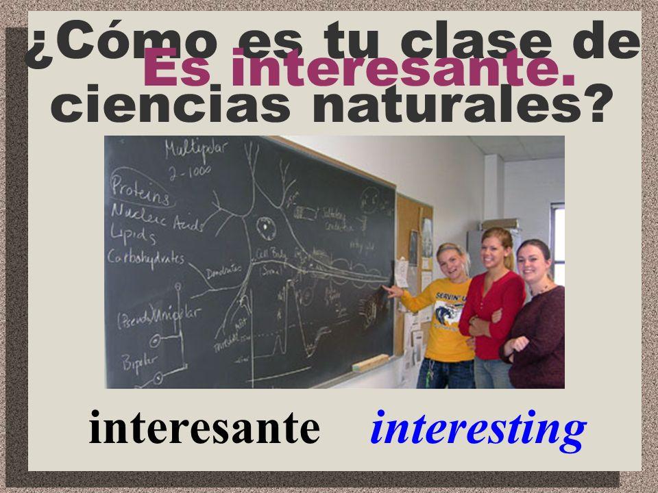 important importante ¿Cómo es tu clase de inglés? Es importante.