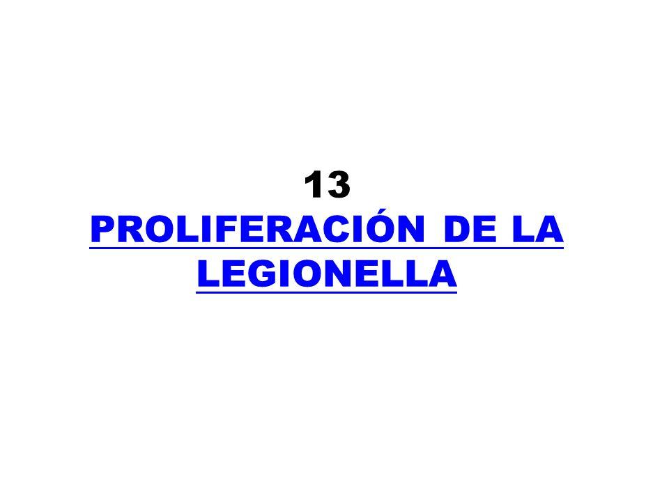 13 PROLIFERACIÓN DE LA LEGIONELLA