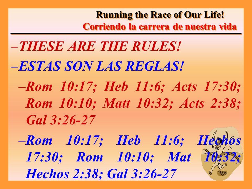 –THESE ARE THE RULES. –ESTAS SON LAS REGLAS.
