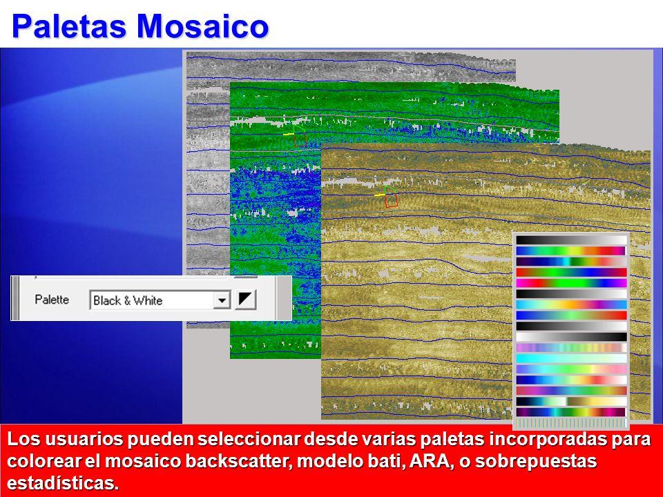 Paletas Mosaico Los usuarios pueden seleccionar desde varias paletas incorporadas para colorear el mosaico backscatter, modelo bati, ARA, o sobrepuest