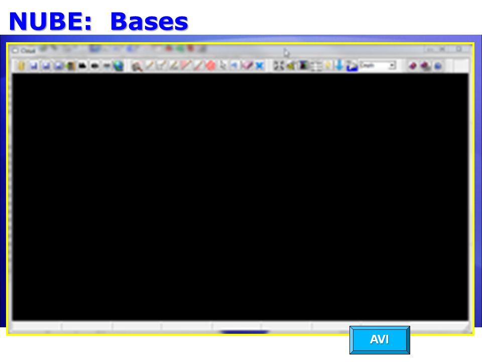 NUBE: Bases AVI
