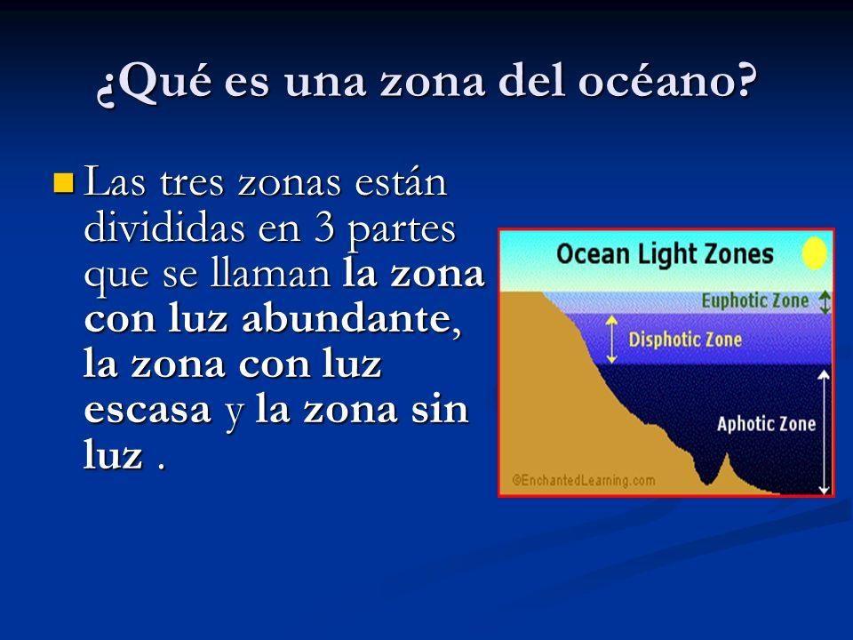 ¿Qué es una zona del océano? Las tres zonas están divididas en 3 partes que se llaman la zona con luz abundante, la zona con luz escasa y la zona sin