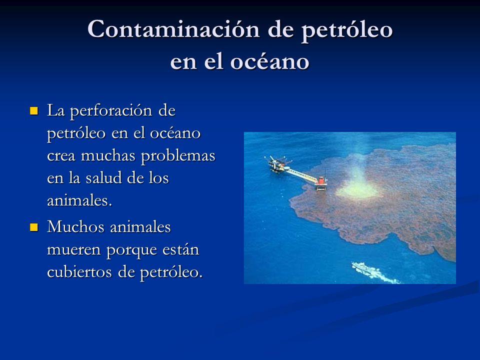 Contaminación de petróleo en el océano La perforación de petróleo en el océano crea muchas problemas en la salud de los animales. La perforación de pe