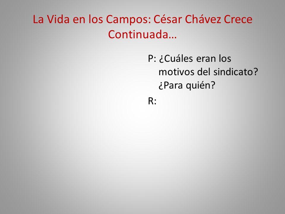 La Vida en los Campos: César Chávez Crece Continuada… P: ¿Cuáles eran los motivos del sindicato? ¿Para quién? R: