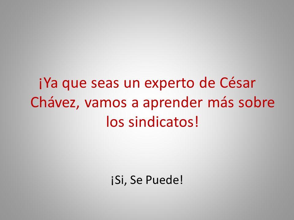 ¡Ya que seas un experto de César Chávez, vamos a aprender más sobre los sindicatos! ¡Si, Se Puede!