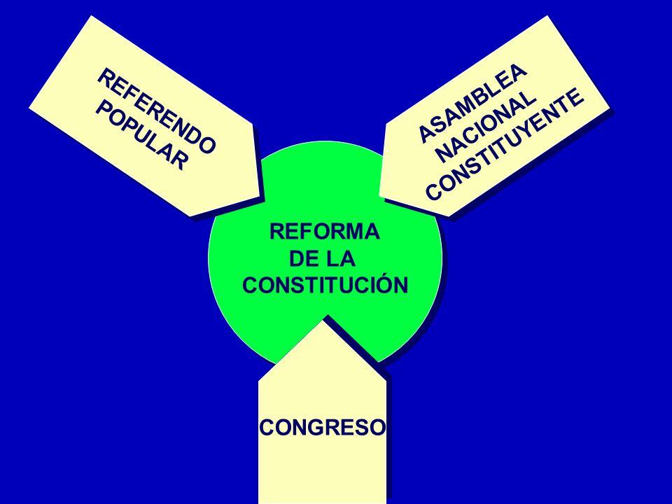 REFORMA DE LA CONSTITUCIÓN REFORMA DE LA CONSTITUCIÓN REFERENDO POPULAR REFERENDO POPULAR ASAMBLEA NACIONAL CONSTITUYENTE ASAMBLEA NACIONAL CONSTITUYE