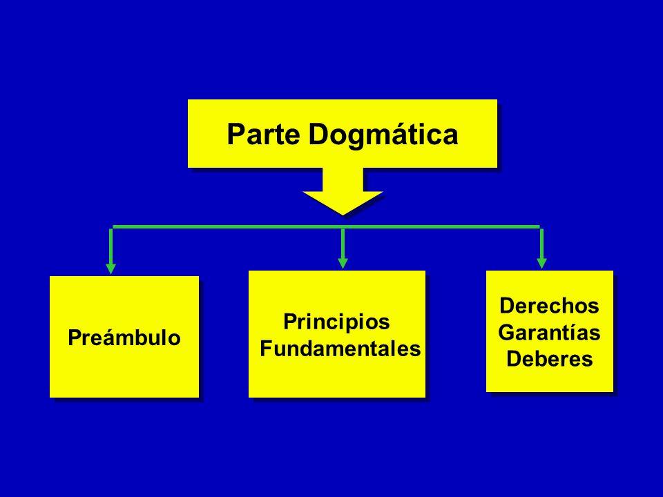 Preámbulo Parte Dogmática Principios Fundamentales Principios Fundamentales Derechos Garantías Deberes Derechos Garantías Deberes