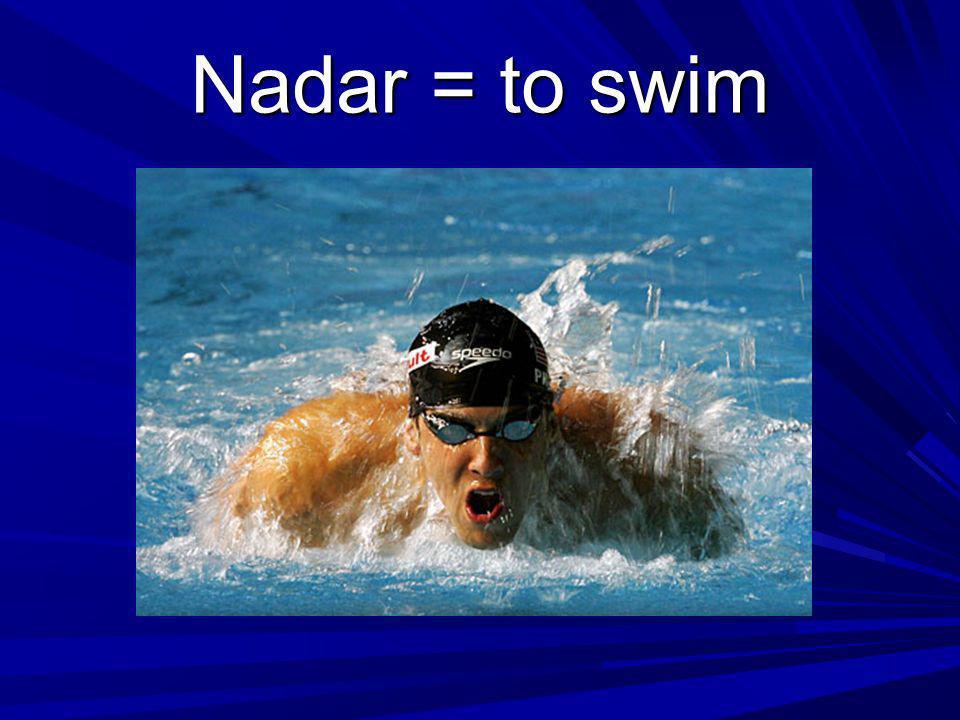 Nadar = to swim