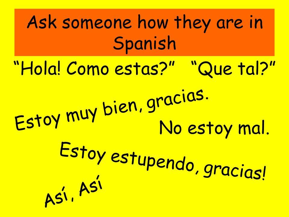 Ask someone how they are in Spanish Hola! Como estas? Estoy muy bien, gracias. Estoy estupendo, gracias! No estoy mal. Así, Así Que tal?