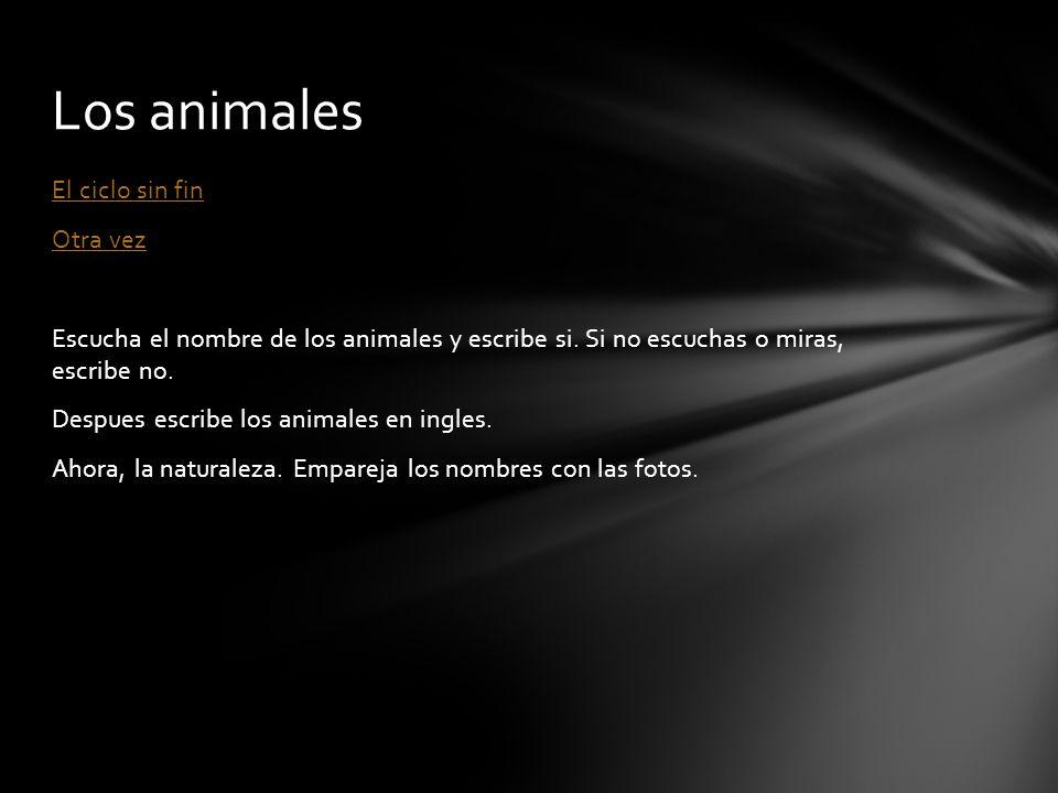 El ciclo sin fin Otra vez Escucha el nombre de los animales y escribe si. Si no escuchas o miras, escribe no. Despues escribe los animales en ingles.
