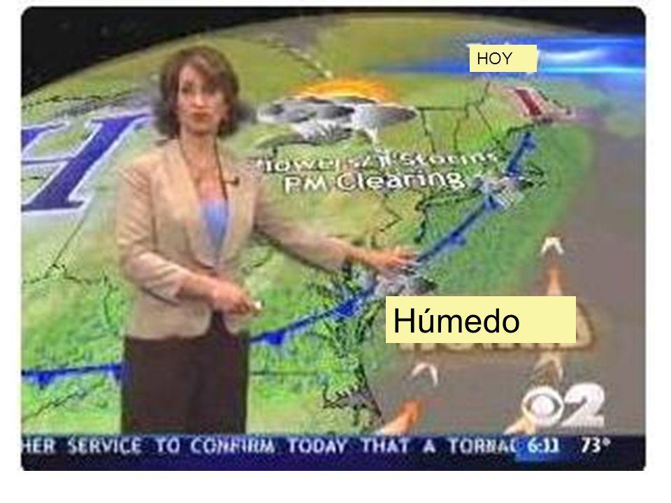 HOY Húmedo