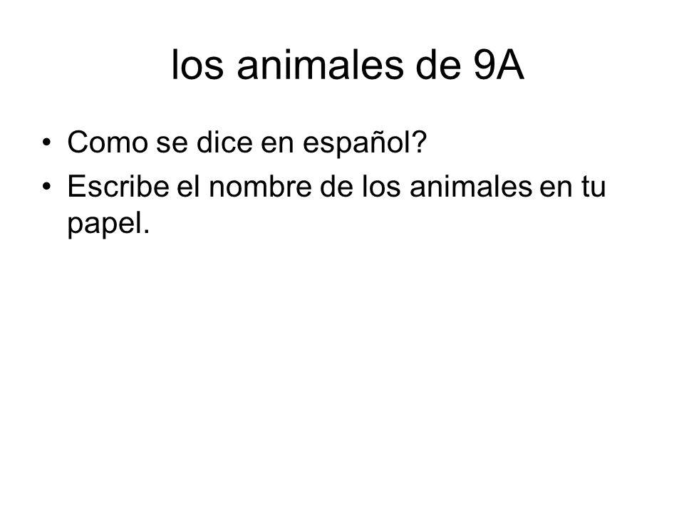 los animales de 9A Como se dice en español? Escribe el nombre de los animales en tu papel.